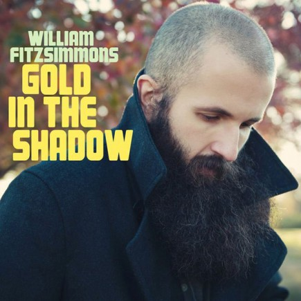 WILLIAM FITZSIMMONS 'Gold in the shadow' - DELUXE EDITION
